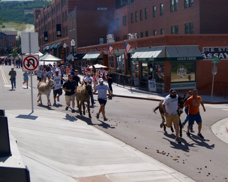 Donkey Racing Cripple Creek